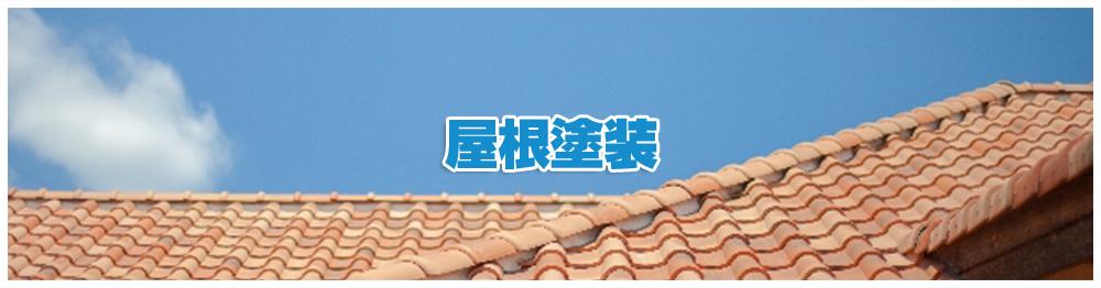 roof_mv